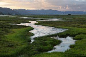 conservation easement appraisals